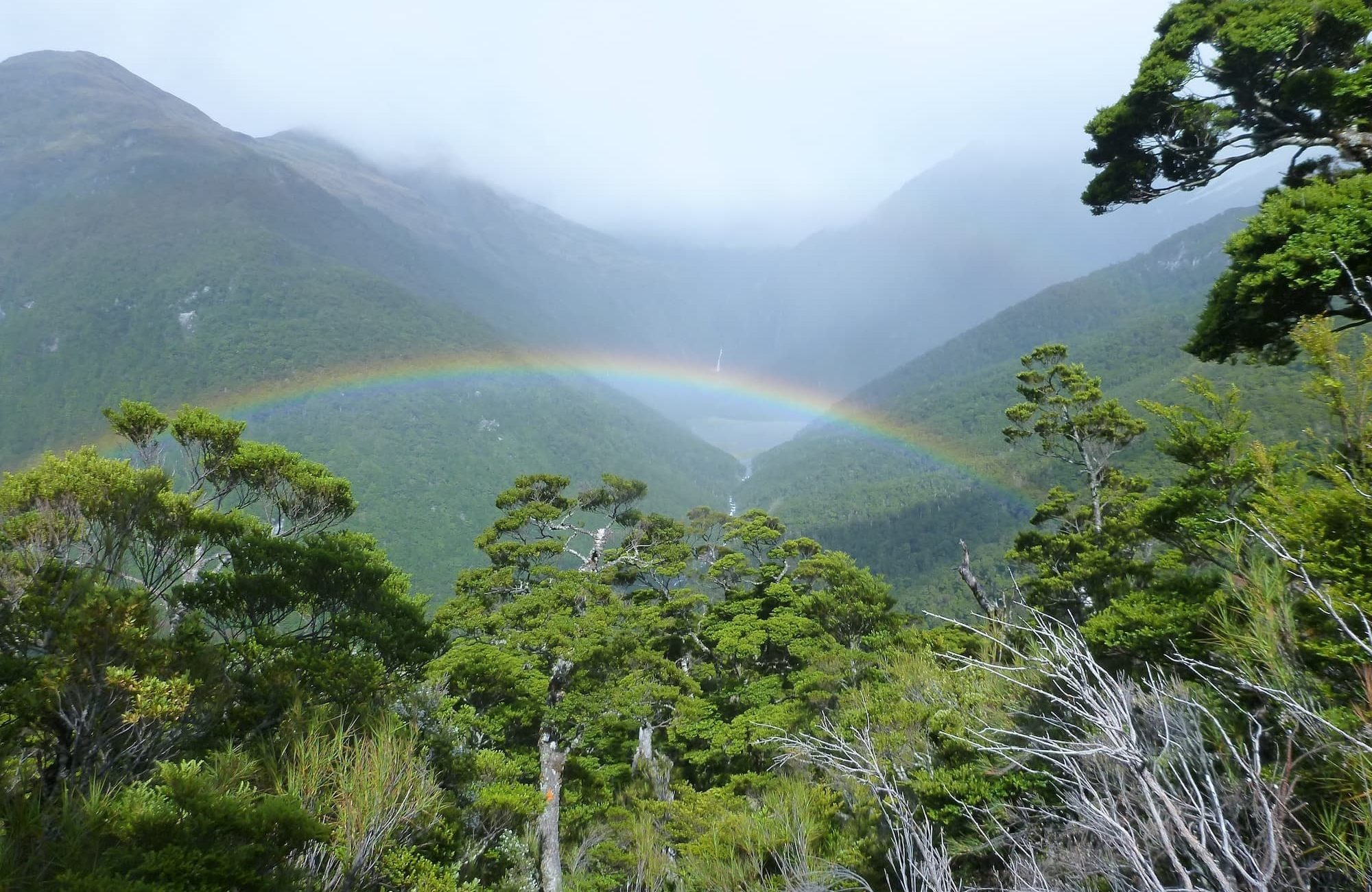 Rainbow over the East Matukituki