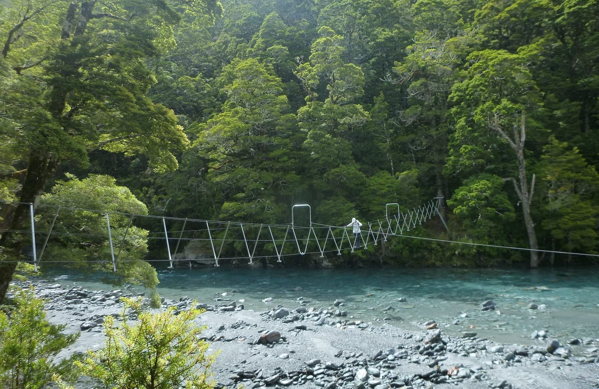 Swingbridge on the East Matukituki